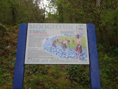 Mooghaun Biodiversity Sign